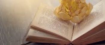 Journée du Livre Loubressac