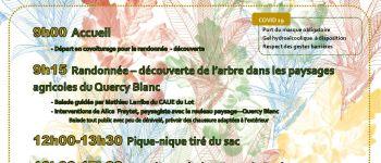 Balade Découverte : \les Bois, Patrimoine du Territoire\ Belfort-du-Quercy