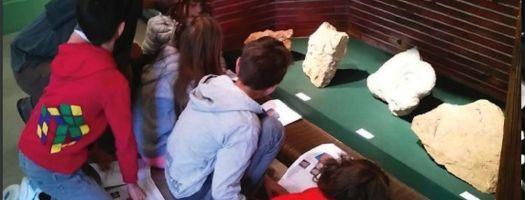 Visite-Enfant Dino et les Fossiles, Musée dHistoire de Figeac Figeac